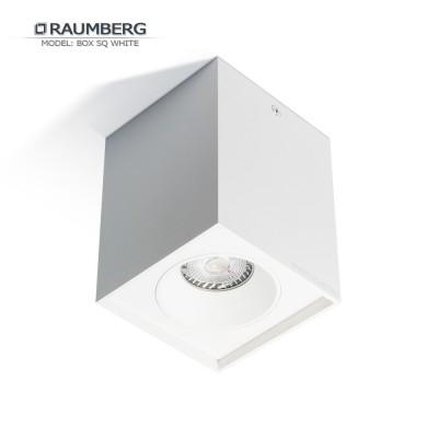 Светильник накладной RAUMBERG BOX SQ GU10 Белый корпус