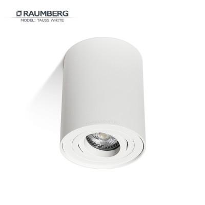 Светильник накладной поворотный RAUMBERG TAUSS (HDL-5600) GU10 Белый корпус