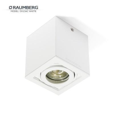Светильник накладной поворотный RAUMBERG OX 13 AC GU10 Белый корпус