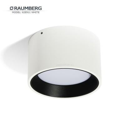 Светильник накладной светодиодный RAUMBERG 62E911 Белый 14вт 2700к