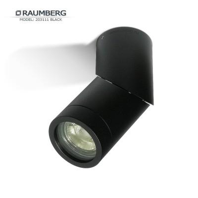 Светильник накладной RAUMBERG 203111 GU10 Черный корпус